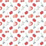 水彩样式结果实和在白色背景的莓果无缝的设计 库存图片