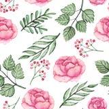 水彩桃红色玫瑰和绿色叶子无缝的样式 库存图片
