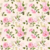 水彩桃红色玫瑰的无缝的样式 库存照片