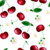 水彩樱桃无缝的样式 向量例证