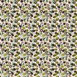 水彩橄榄无缝的样式 免版税库存图片
