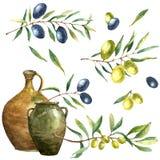 水彩橄榄树枝背景 免版税库存图片