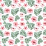 水彩浅粉红色的花和绿色蕨无缝的样式 免版税图库摄影
