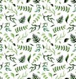 水彩深绿叶子重复草本样式 免版税库存图片