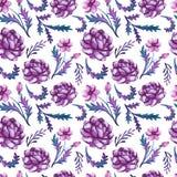 水彩深刻的紫罗兰色牡丹和叶子无缝的样式 免版税库存图片