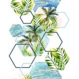 水彩热带叶子和棕榈树在几何形状无缝的样式 库存图片
