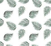 水彩热带无缝的样式棕榈叶 免版税库存照片