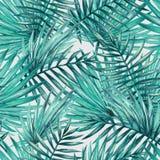水彩热带棕榈叶无缝的样式 免版税库存照片