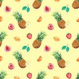 水彩热带水果莓果无缝的样式背景 免版税库存图片