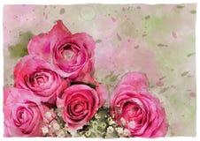 水彩玫瑰模板卡片 图库摄影