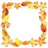 水彩秋叶方形的框架 免版税库存照片