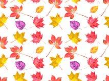 水彩秋叶的样式 免版税库存图片
