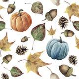 水彩秋天无缝的样式 手画杉木锥体、橡子、莓果、黄色和绿色秋天叶子和南瓜装饰isolat 库存图片