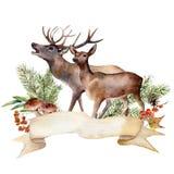 水彩秋天森林标签 与马鹿、蘑菇、花揪、莓果和被隔绝的杉木分支的手画丝带 免版税图库摄影