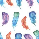 水彩羽毛无缝的样式 免版税图库摄影