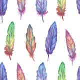 水彩羽毛无缝的样式 库存图片