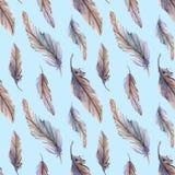 水彩羽毛种族boho无缝的样式背景传染媒介 免版税库存图片
