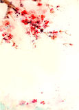 水彩背景樱花 库存照片