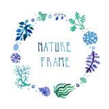 水彩自然与手写的文本的传染媒介框架与花、莓果和植物 图库摄影