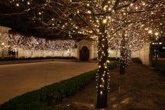 彩色小灯在庭院里 免版税库存照片