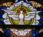 彩色玻璃-鸠,圣灵 免版税库存图片