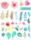 水彩花卉收藏 免版税图库摄影