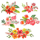 水彩花卉收藏 免版税库存照片