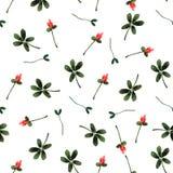 水彩花卉无缝的样式 免版税库存图片