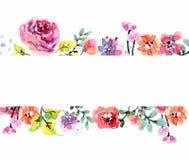 水彩花卉框架 免版税库存照片