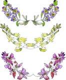 水彩花卉边界,葡萄酒样式水彩花卉元素 免版税图库摄影