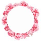 水彩花卉贺卡 水彩百花香 装饰花卉框架 背景查出的白色 库存照片
