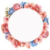 水彩花卉贺卡 水彩百花香 装饰花卉框架 背景查出的白色 免版税库存图片