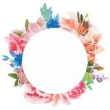 水彩花卉贺卡 水彩百花香 装饰花卉框架 背景查出的白色 库存图片