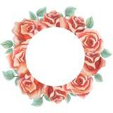 水彩花卉贺卡 水彩百花香 装饰花卉框架 背景查出的白色 免版税库存照片