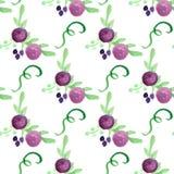 水彩花卉紫罗兰色莓果手拉的传染媒介 免版税图库摄影