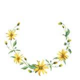 水彩花圈 与叶子的黄色雏菊 免版税库存图片