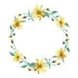 水彩花圈 与叶子的黄色雏菊 库存照片
