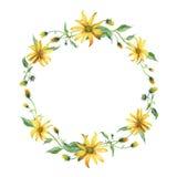 水彩花圈 与绿色叶子的黄色花 库存图片