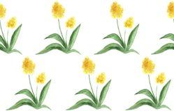 水彩花无缝的样式 库存例证