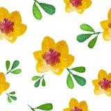 水彩花无缝的背景 库存图片