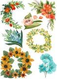 水彩花束和花的被绘的收藏 在白色背景隔绝的手拉的设计元素 库存图片