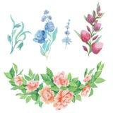 水彩花束和花的被绘的收藏 在白色背景隔绝的手拉的设计元素 库存照片