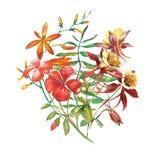 水彩花束花 向量例证