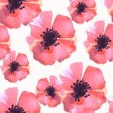 水彩花纹花样样式 库存图片