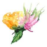 水彩花花卉钮扣眼上插的花集合例证 库存照片