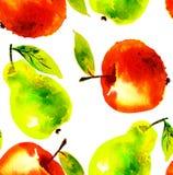 水彩苹果和梨果子例证 免版税库存图片