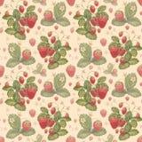 水彩草莓样式 库存照片