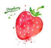 水彩草莓 免版税库存图片