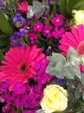 彩虹五颜六色的花 库存图片