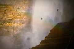 彩虹十字架瀑布 库存图片